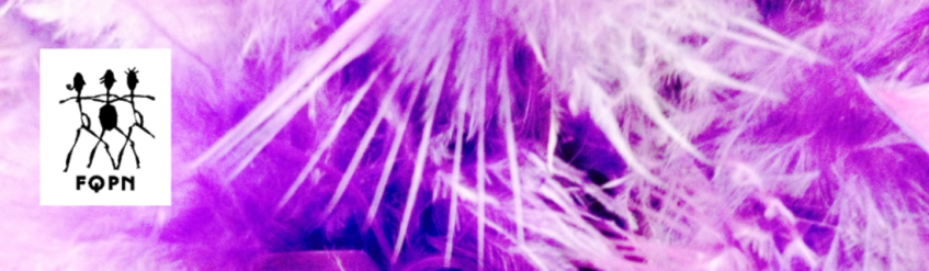 FQPN header with feathers